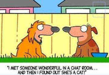 Funny Dog Cartoon