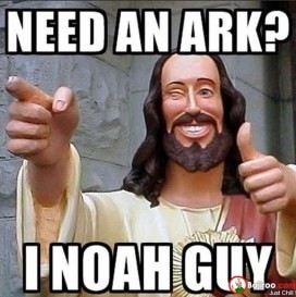 Need An Ark I Noah Guy